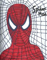The Amazing Spider-Man by LooneyArtist