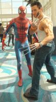Spider-Man and Wolverine at Long Beach Comic Con by trivto