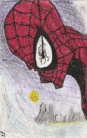 Spider Man: Profiled by UnusTurpisOrdo