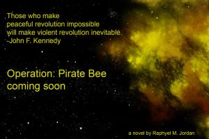 Operation Pirate Bee: Ad 1 by rmj7
