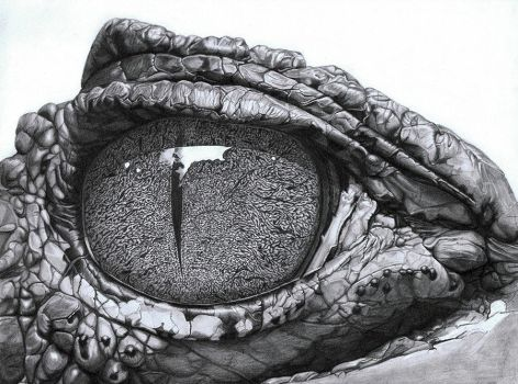 Eye Of The Caiman by PunkyMeadows