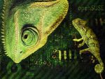 Geeko OpenSUSE Wallpaper by hell0z0mbie