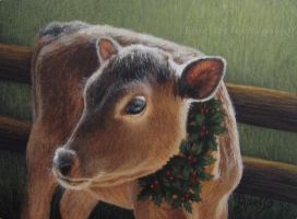 Christmas Calf by KMAP3156