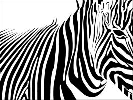 zebra skin by skatalyst