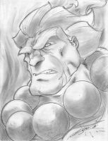 Akuma Head Shot by StevenSanchez