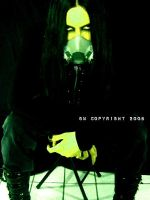 Link Tilldemann : Toxic II by Holle
