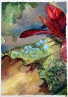 Crabapple with Red Spring Leaves ATC by unSpookyLaughter