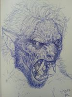 quick werewolf transformation sketch by spdmngtruper