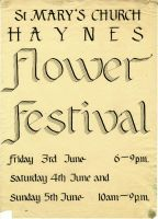 Haynes Flower Festival by barefootliam
