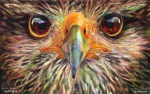 Eagle - Ballpoint pens by XRlS