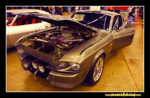 mustang by sandwedge