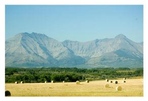 Posterboard Mountains by Straynj3