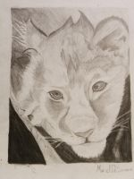Lion cub by Kuot