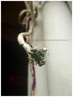 Green Rope End. by breathofbetrayal