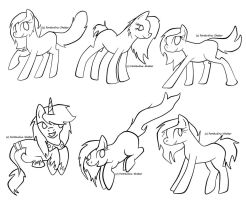 Cat pony lines by Fortitudine-Shelter