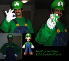 Luigi Cosplay Collage by NewEnglandLuigi