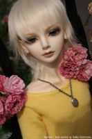 BJD - M - So gay and gorgerous by hyacinthess
