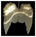 wings by clandestine-stock