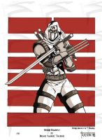 storm shadow by tillman54