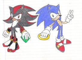 Sonic and Shadow by Stealthfang