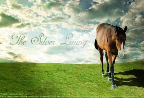 The Silver Lining - Texture Version 1 by Spallyz