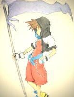 Sora coloured by tash360