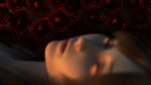 Roses by Grimous