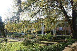 GlendonCollege: Frost Library2 by Tya226148