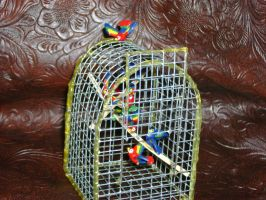 Birds Caged by Candrence