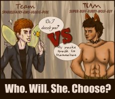 What Team are you on? by ChristianKitsune
