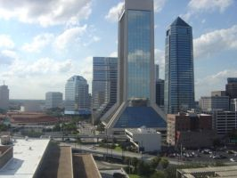 Reflection of Jacksonville by VegetarianKitty