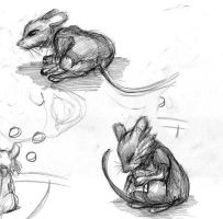 Mrs Brisby and the medicine by cornerstreet