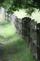 The Fence by Badgertastic