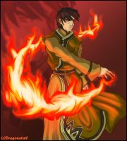 Zuko:Prince of the Fire Nation by dragonXtail