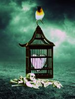 Caged by wdnest