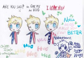 niall hugs   for xMrsLaHoran by kiachan98