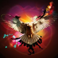 Colorful Eagle by Alexeei