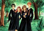 Harry Ginny Hermiony and Ron by anothercrazydannyfan