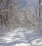 Winter Snow Path by Archangelical-Stock
