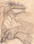 Dragon on toned paper by whisperpntr