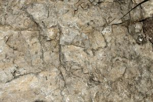 Stone Texture - 8 by AGF81