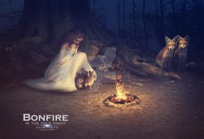 Bonfire by wasaps00