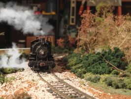 0-6-0 Number 5 by Eddie-Sand