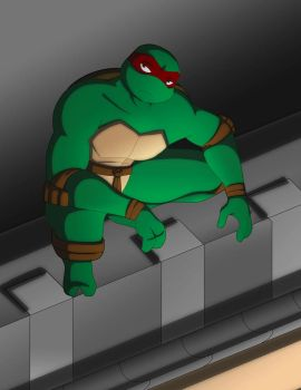 TMNT 25 Contest by evilsherbear