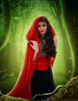 Once upon a time ... Little Red Riding Hood by Wesley-Souza