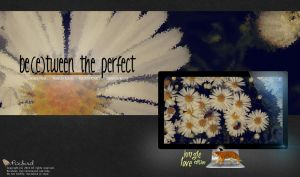 Between The Perfect by pixbird