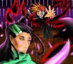 bleach fight by zhane00