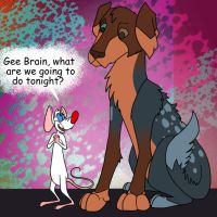 Pinky and the Brain by systemcat