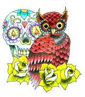 Coloured Owl Design by RandoM-CommentarY