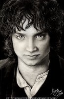Frodo Baggins -Pencil Portrait by FuchsiaBud